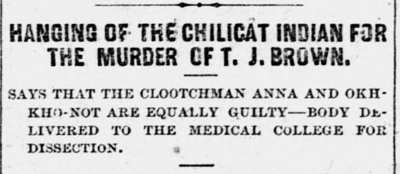 hanging of the chilicat HEADLINE