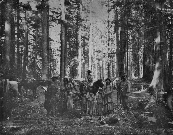 dakelh 1890