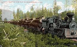 whatcom logging