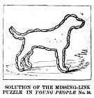 missing link 2