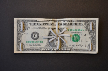 dentalium dollar bill