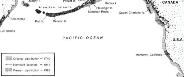 sea otter range