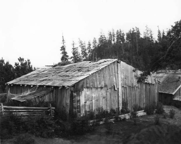 potlatch house swinomish