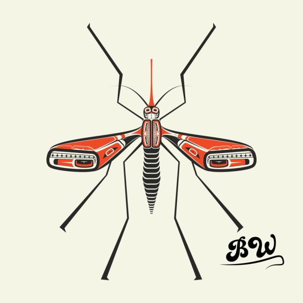salish mosquito.png