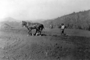 tuolumne rancheria alex-thompson-with-horses-300x201