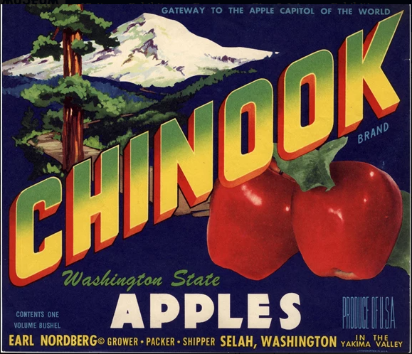 apples chinook