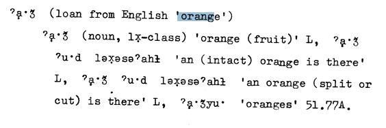 eyak orange