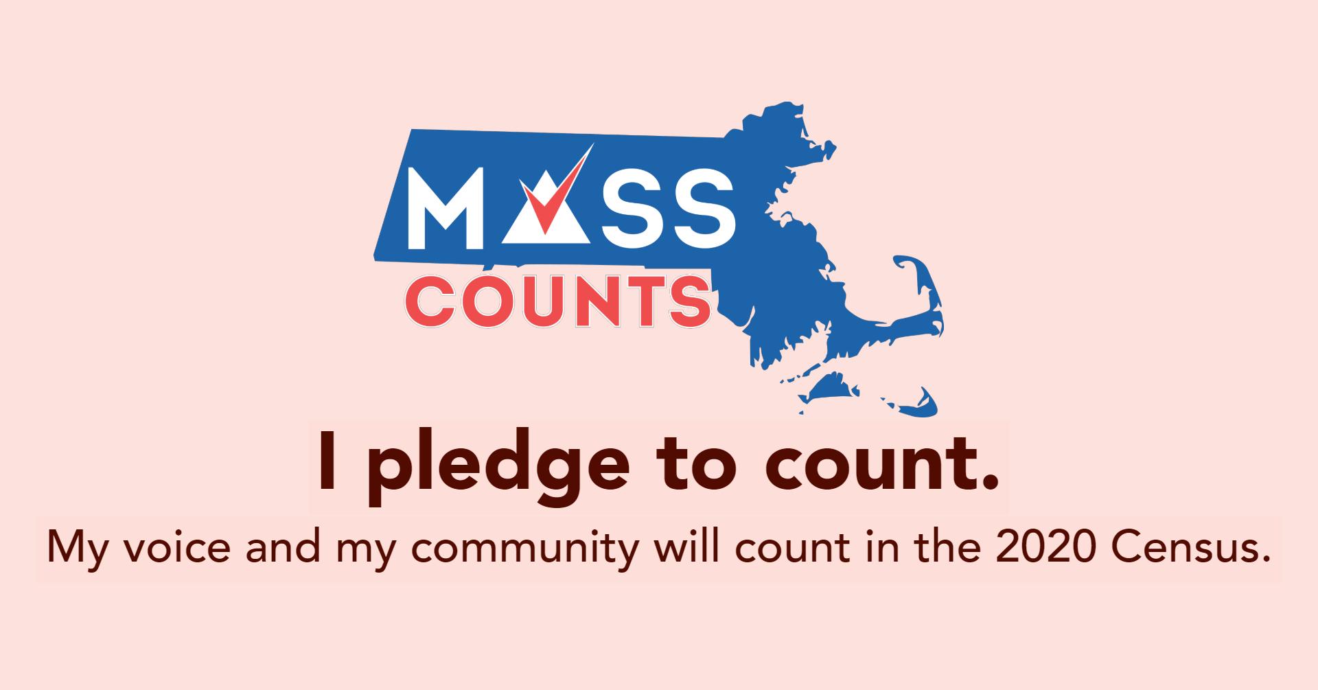 mass counts